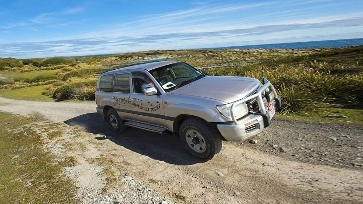 Tall Timbers 4WD Tours