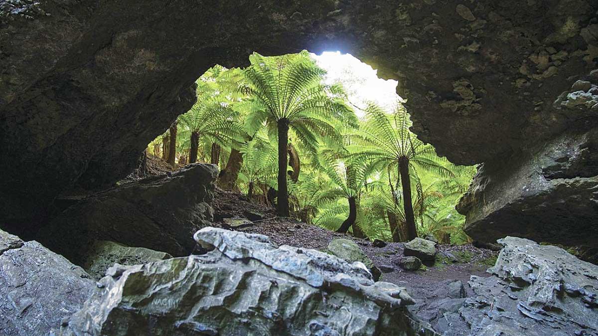 Trowutta Arch